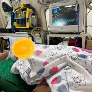 父の救急搬送…の画像