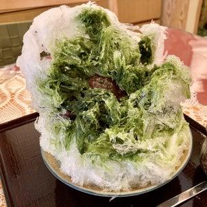 【小手指北口】かき氷始まってま〜す!店内も涼しいお茶屋さんのカフェ『武蔵利休』の画像