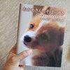 【1年生】読書感想文書きやすい名著だな!と思った本の画像