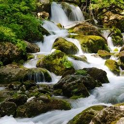 画像 「水」の本質 ~陰占から読む「木火土金水」 の記事より 2つ目