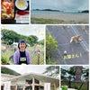 夏休みにおすすめ!宮崎県延岡市 道の駅「北浦」の画像
