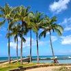 次なるハワイをいつにする?