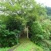 和霊神社(坂本龍馬脱藩の道)~高知県~の画像