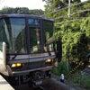 戻り電車の画像