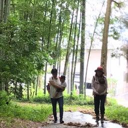 画像 畑と竹藪ピクニック の記事より 1つ目