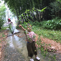 画像 畑と竹藪ピクニック の記事より 3つ目