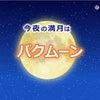 今夜は満月  「バクムーン」の画像