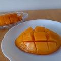 オレンジの普通でハッピーライフ♪