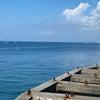 7月25日   台風対策と五輪セーリング会場の画像