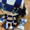 東京オリンピックが始まりましたね〜レソト王国を応援しています