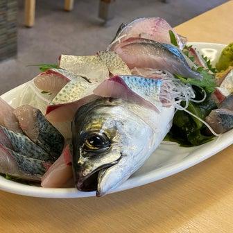 徳島記① 活魚料理 びんび家@徳島・鳴門