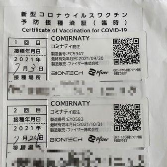 コロナワクチン2回目副反応