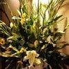 今週の生け花とおつまみの画像