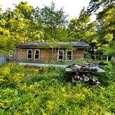 山小屋で暮らす豊かな森の物語