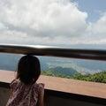 ゴンドラ山頂駅から小毛無山展望台へ