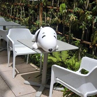 エモすぎる!プレオープンに行ってみた@PEANUTS Cafe SUNNY SIDE