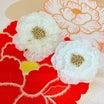 牡丹と秋明菊