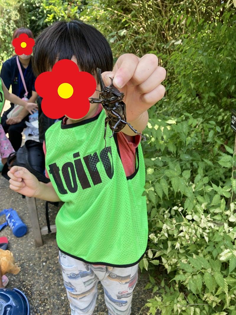 o1000133314978391367 - 7/24 Toiro平塚 季節の花が溢れる花菜ガーデンへ!