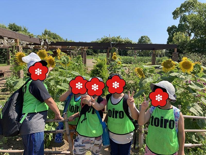 o1000075014978391763 - 7/24 Toiro平塚 季節の花が溢れる花菜ガーデンへ!