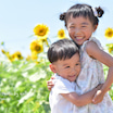 【aki*】8/1(日)は沼津ひまわり畑で笑顔撮影に変更です!