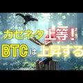 ガセネタ上等!ビットコイン(BTC)は上昇する #ビットコイン #btc
