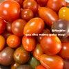 トマト〜の画像