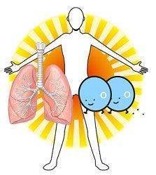 呼吸・細胞
