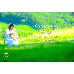 美フォトシリーズ♡Symphony音と光と振動との画像