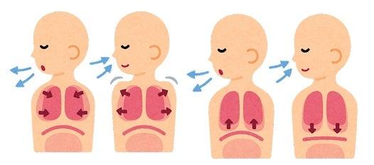 腹式呼吸・胸式呼吸