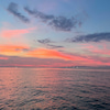 あす1日(日)夜イカメタル船、予定通りに出船いたします!の画像