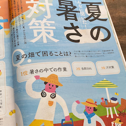 画像 【雑誌掲載】やさいの時間(NHK出版) の記事より 4つ目