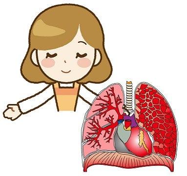 呼吸と血液