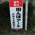 田んぼdeアートin山岡町(2021)