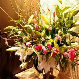 画像 今週の生け花とおつまみ の記事より 1つ目