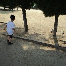 画像 公園遊び♪ の記事より 10つ目