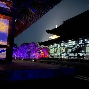 東寺の画像