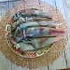 頂き物でちょっと贅沢な朝ごはん♪「イカ朝定食」の画像