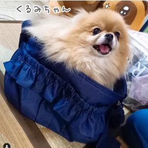 くるみちゃんのお写真ありがとうございます☆2021.08.04②の画像