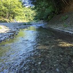 画像 川に流される&ウィークリー占い の記事より
