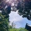 マル秘クレンジング法で夏のうっかり日焼け肌をリセット!の画像