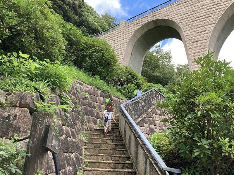 o1000075014982904138 - 8/3(火) toiro平塚 七沢森林公園へ行こう!!