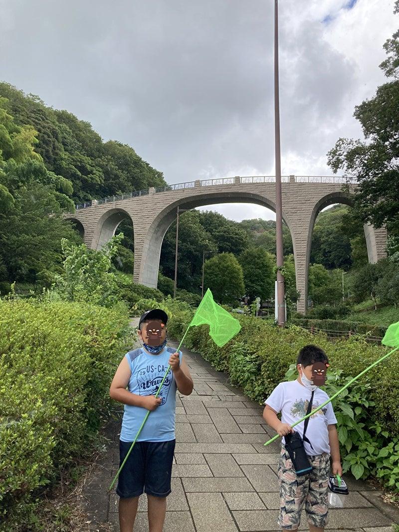 o1000133314982904081 - 8/3(火) toiro平塚 七沢森林公園へ行こう!!