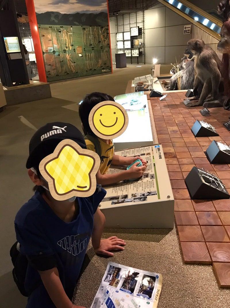 o1080144014984535040 - ♡8月7日toiro藤沢 合同イベント♡