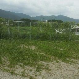 画像 福岡 便利屋駐車場の草刈り作業 の記事より 5つ目