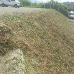 画像 福岡 便利屋駐車場の草刈り作業 の記事より 3つ目