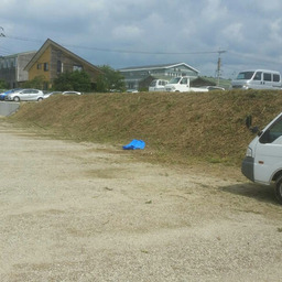 画像 福岡 便利屋駐車場の草刈り作業 の記事より 4つ目