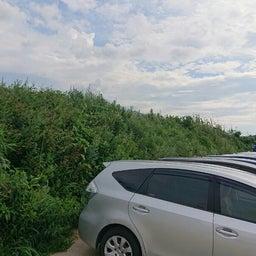 画像 福岡 便利屋駐車場の草刈り作業 の記事より 1つ目