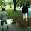 雨の合間に…♪の画像