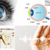LEAP3-脳の統合:視覚&聴覚、体と目の協調性の画像
