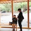 北海道・吉方位家族旅行(写真多め)その2の画像